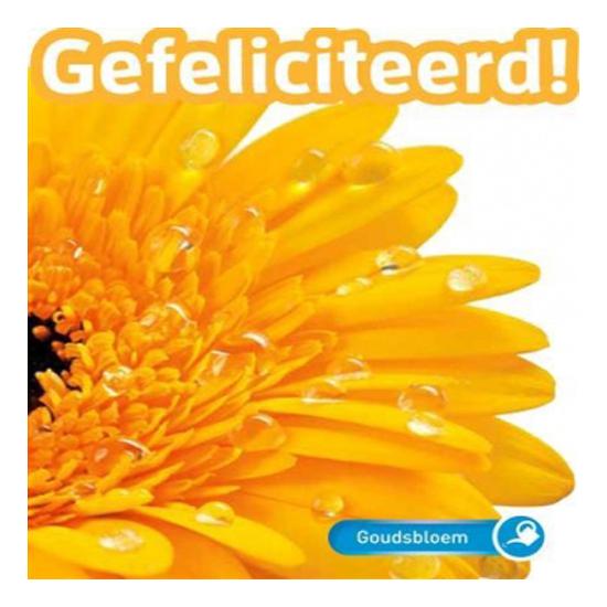 Goudsbloem - gefeliciteerd! - seeds & greets