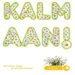 kamille - kalm aan - seeds & greets